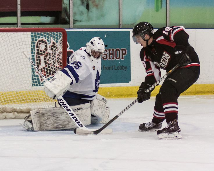 Colin Burns Lambton Shores Predators # 18 Tier II GOJHL 2014-15 season
