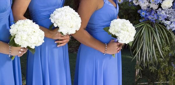 Cornflower Blue Wedding Theme | ... cornflower blue short dresses with white hydrangea bouquets tags blue