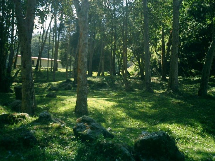 Zona de Camping by RodriguezFlores For more great camping info go to http://CampDotCom.Com #camping #campinghacks #campingfun