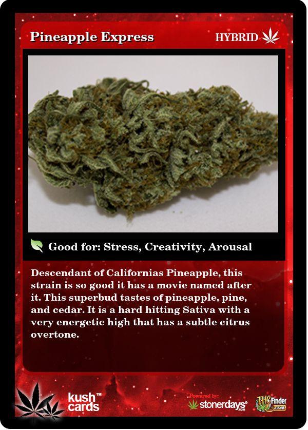 Pineapple Express | Repined By 5280mosli.com | Organic Cannabis College | Top Shelf Marijuana | High Quality Shatter