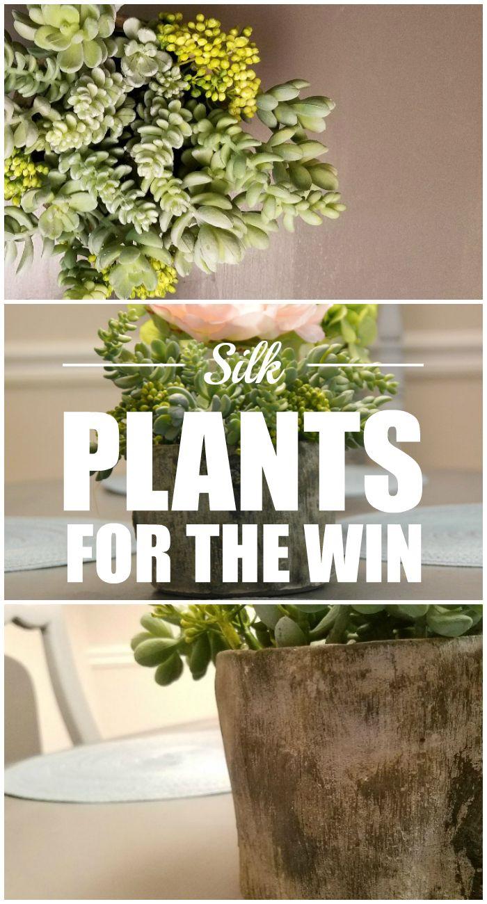 green silk plant, silk plants, silk succulent