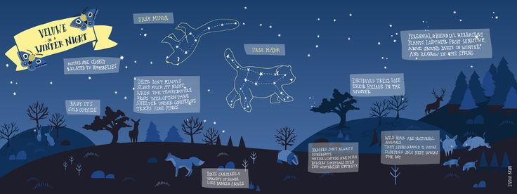 Starry night night sky night map of Park Hoge Veluwe by Studio Brun www.studiobrun.nl