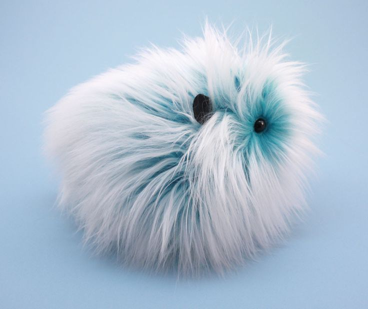 Yeti the Aqua Blue and White Guinea Pig Stuffed Plush Toy