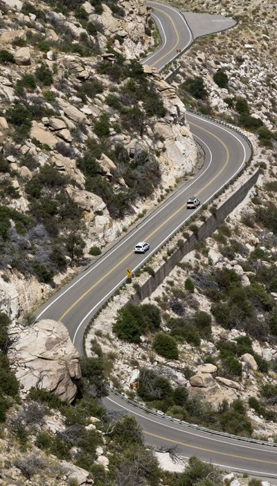 Drive up majestic Mt. Lemmon on the Sky Island Scenic Byway. Mount Lemmon, with a summit elevation of 9,159 feet, is the highest point in the Santa Catalina Mountains. It is located in the Coronado National Forest north of Tucson, Arizona.                                                                                           ➳ʈɦuɲɖҽɽwσℓʄ➳