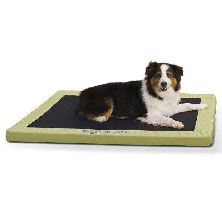 "K&H+Green+Comfy+N'+Dry+Indoor/Outdoor+Orthopedic+Dog+Bed+-+K&H+Green+Comfy+N'+Dry+Indoor/Outdoor+Orthopedic+Dog+Bed,+48""+L+x+36""+W - http://www.petco.com/shop/en/petcostore/product/kandh-green-comfy-n-dry-indooroutdoor-orthopedic-dog-bed"