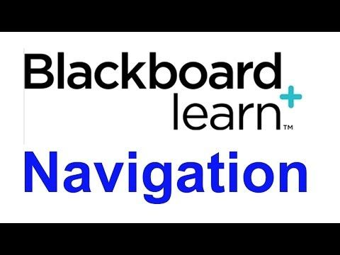 Navigating Your Course in Blackboard Learn - YouTube