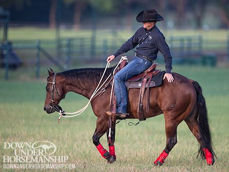 Downunder Horsemanship Training Tip: Always End Training Sessions On A Good Note