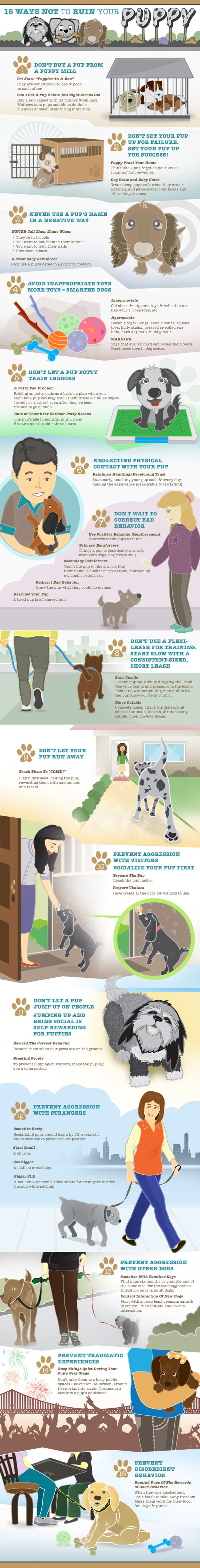 15 Ways Not To Ruin Your Puppy, A Graphic