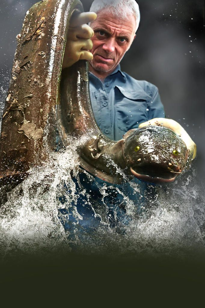 River Monsters host and extreme angler Jeremy Wade uncover the world's largest, strangest and most dangerous fish.