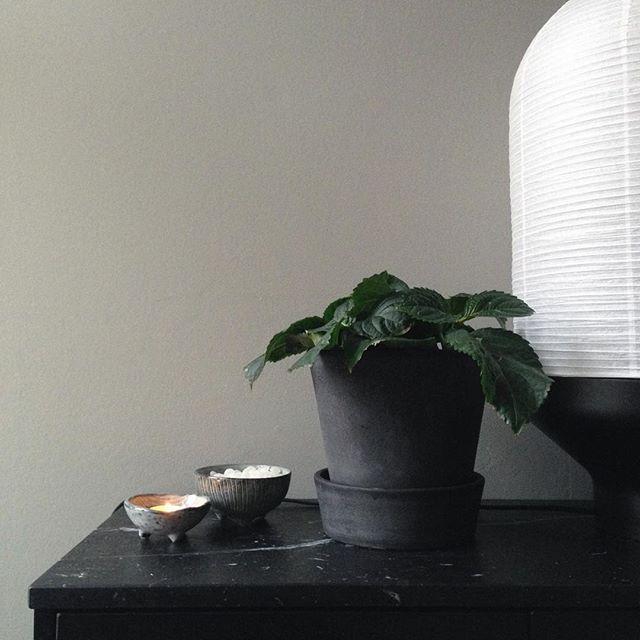 http://www.aitonordic.it/collections/protti-per-cucina-e-per-tavolo/products/bowl-nordic-sea-2-set-broste-copenhagen