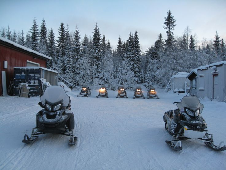 For the adrenalin junkies in the group, the best way to experience the beauty of nature is to speed through it. Snowmobiles did the trick.