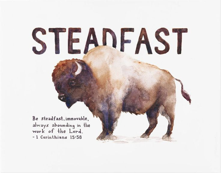 "Art print created from an original watercolor illustration based on Scripture. The artwork features a bison and handlettered verses from the Bible, ""Be steadfast, immovable, always abounding in the work of the Lord."" - 1 Corinthians 15:58"