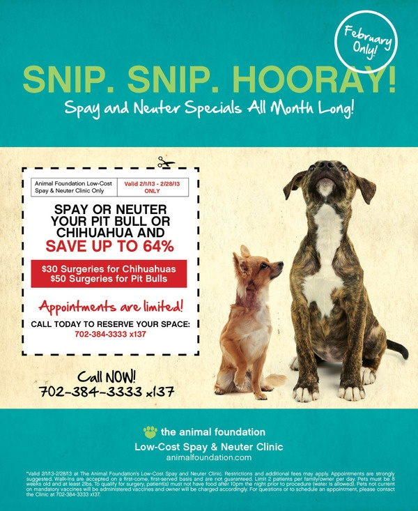 This Is The Impact That We Are Making Low Cost Spay And Neuter