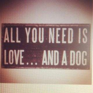 all you need is love... and a dog: Photo