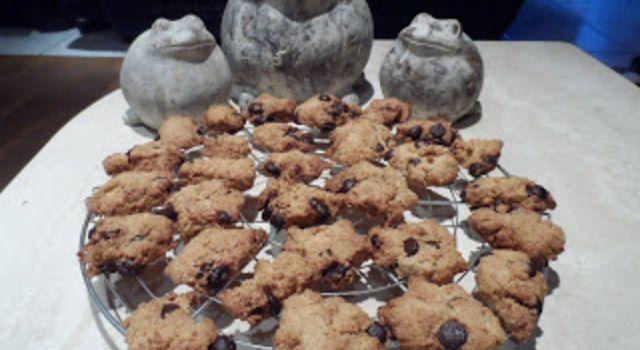 Havermoutkoekjes met kokosmeel, gezond tussendoortje volgens de voedselzandloper