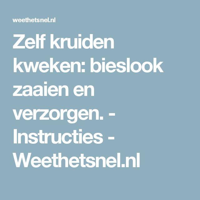 Zelf kruiden kweken: bieslook zaaien en verzorgen. - Instructies - Weethetsnel.nl