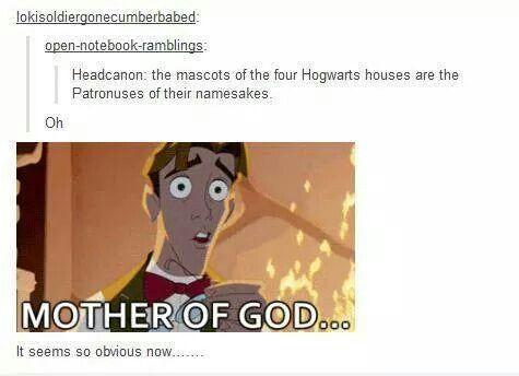 Harry Potter headcanon