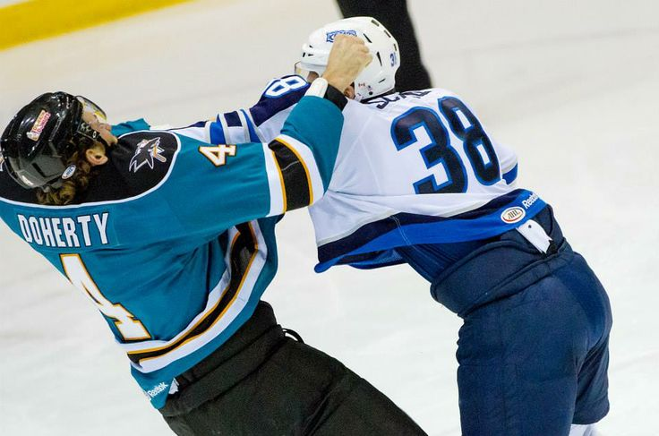 Worcester Sharks defenseman Taylor Doherty scraps with St. John's IceCaps forward Ryan Schnell (Nov. 15, 2013).
