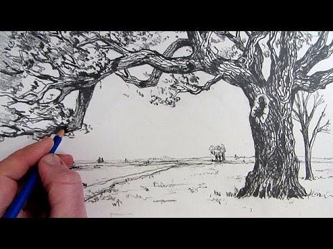 ▶ How To Draw A Tree: Narrated step by step - YouTube