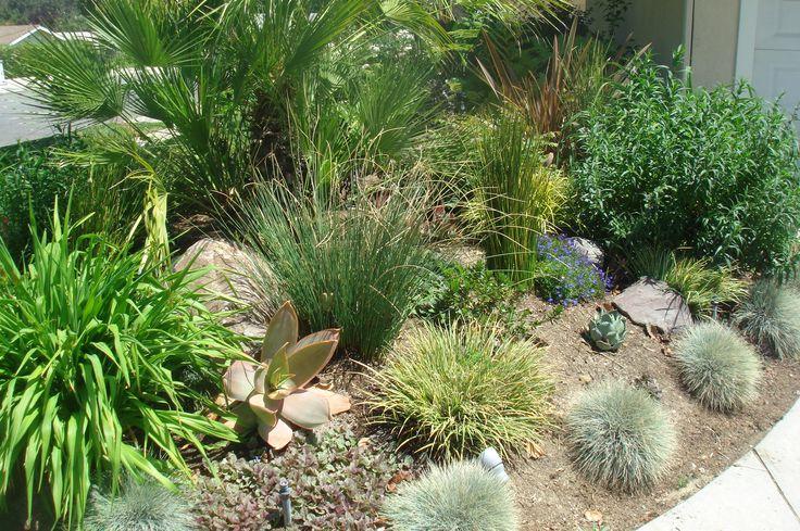 63 best landscape ideas images on pinterest decks for Ornamental grasses for small spaces