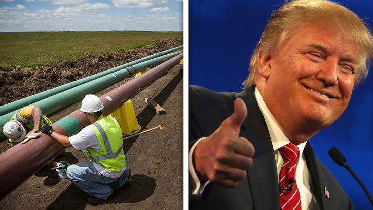 Crooked Donald Trump To Profit From Controversial Oil Pipeline