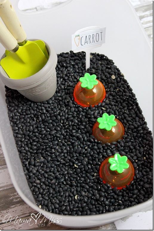 sensory play: Carrot Garden Sensory Bin sensory carrot spring Read: The Carrot