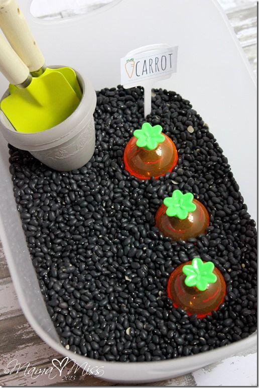 sensory play: Carrot Garden Sensory Bin #sensory #carrot #spring