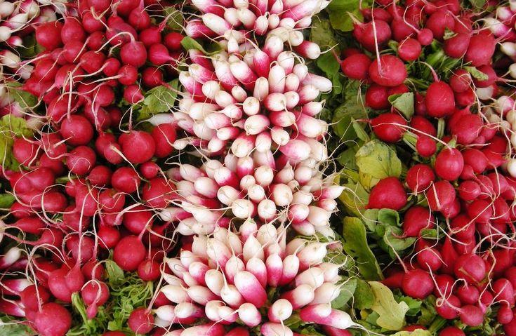 Хрустящий редис- один из наиболее желанных и востребованных салатных овощей. Любят редис в первую очередь за его исключительные вкусовые качества, однако не последнюю роль играет несомненная полезнос…