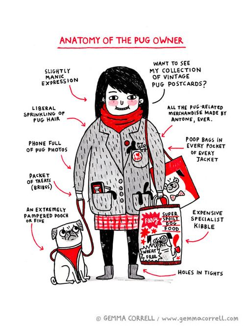 Anatomy of the Pug Owner © Gemma Correll 2012