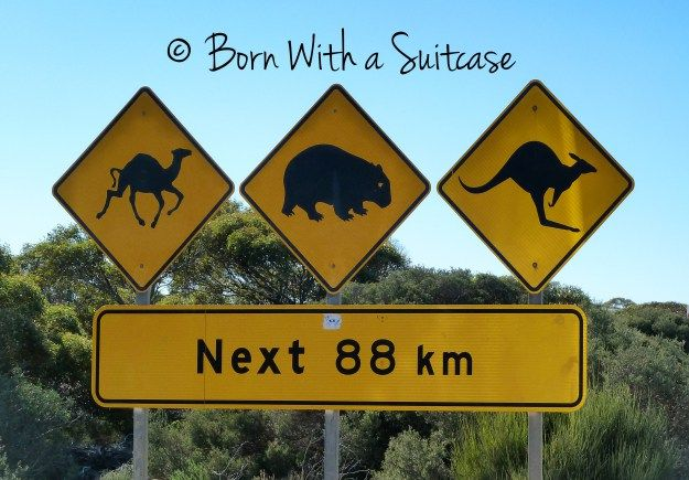 Australian road trip | BORN WITH A SUITCASE
