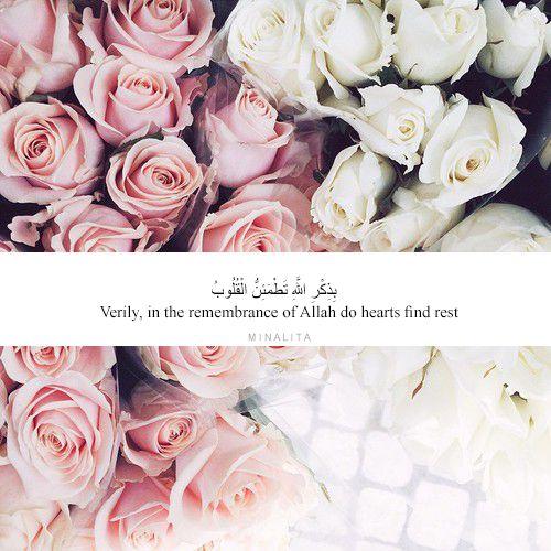 بِذِكْرِ اللَّهِ تَطْمَئِنُّ الْقُلُوبُ Verily, in the remembrance of Allah do hearts find rest • [surah Ar Ra'd: 28] • The tranquility of hearts and obedience to Allah go in hand in hand. If you loose one you loose the other as well. He should be in...