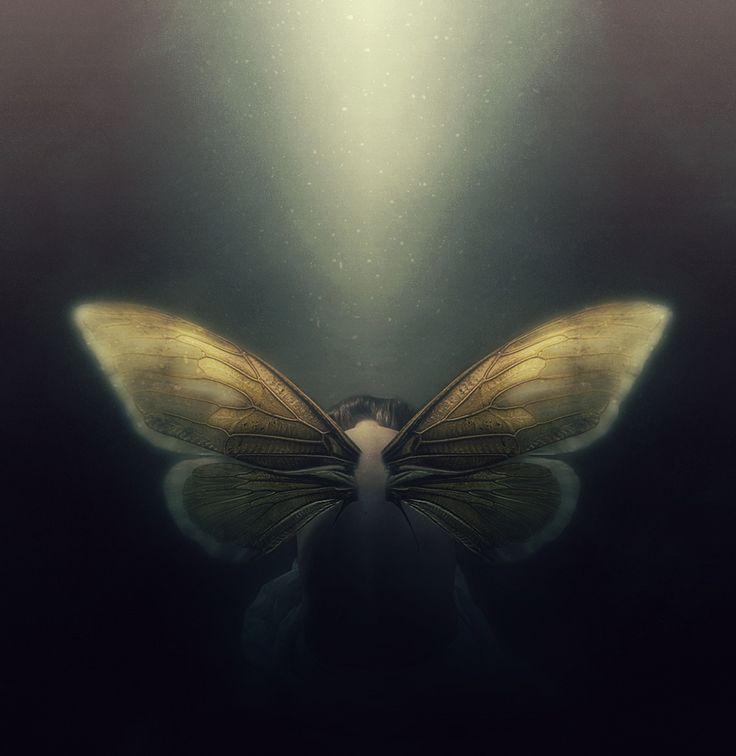 Spread your wings by Gitte Prasz on 500px