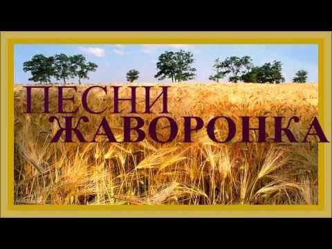 1 ЧАС - Песни Дивных Российских Полей / Russian Skylark Sounds - YouTube