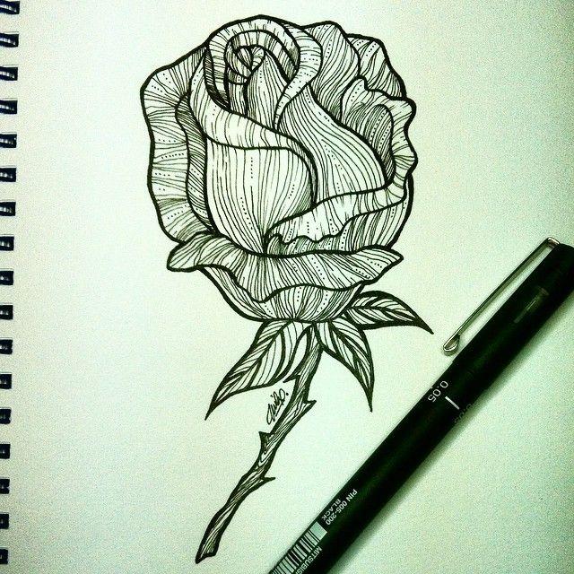 Rose fantasia - beauty ❤️ day 8 #inktober #vfgillustration