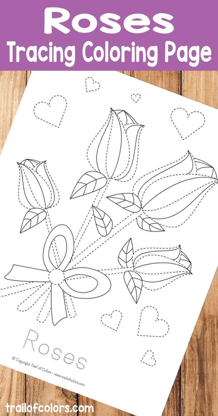 The zoology coloring book - Free Printable Roses Tracing Coloring Page