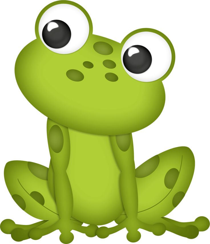 162 best frog clip art images on pinterest frogs animales and rh pinterest com Baby Frog Clip Art Frog Graphics
