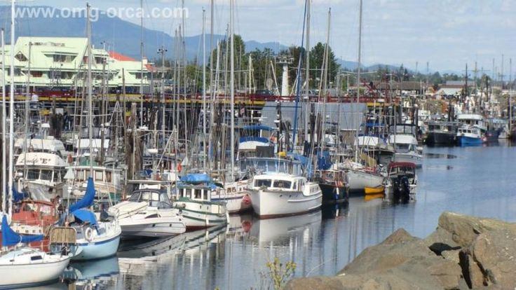 Fisherman's Wharf, Campbell River