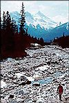 Canmore, Banff and Kananaskis Canadian Rockies Hiking Guide