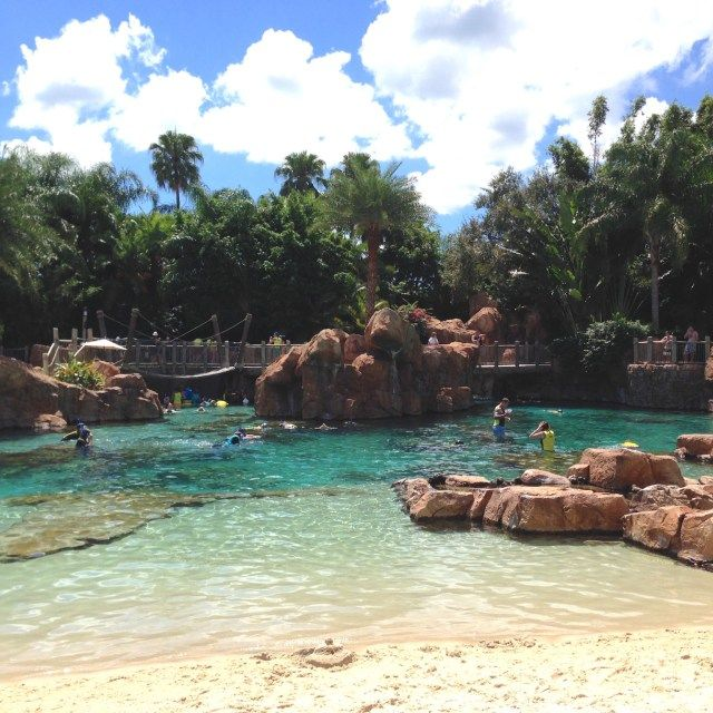 Our day at Discovery Cove in Orlando, Florida, USA by Wilson Travel Blog