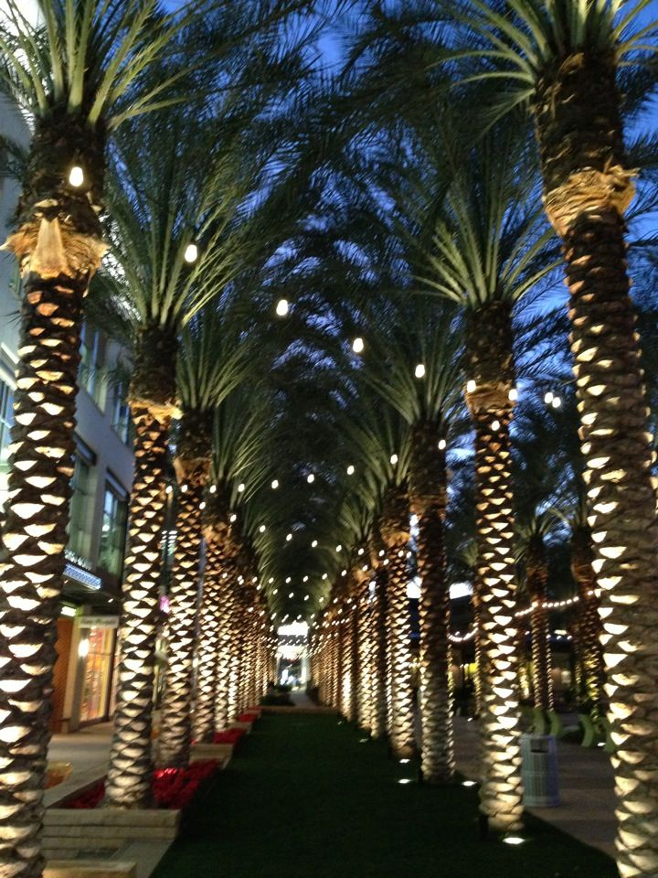 For a day trip or a night on the town in Scottsdale, Ariz., Kierland Commons is the place to go for eats and shopping.