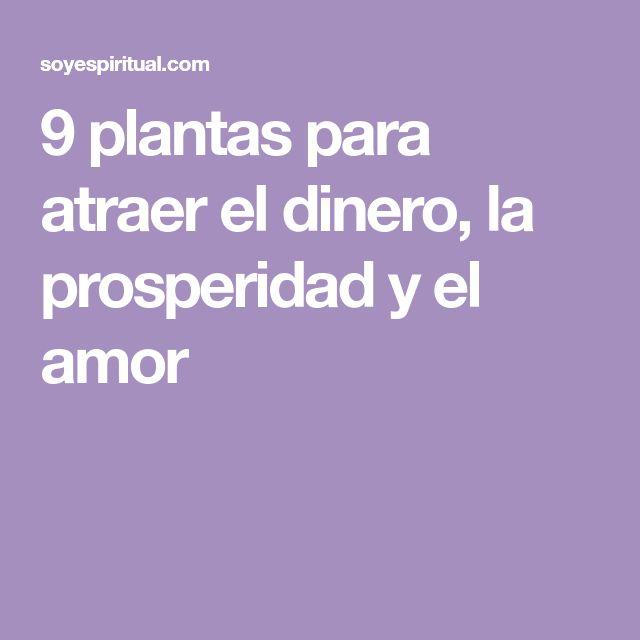 9 plantas para atraer el dinero, la prosperidad y el amor