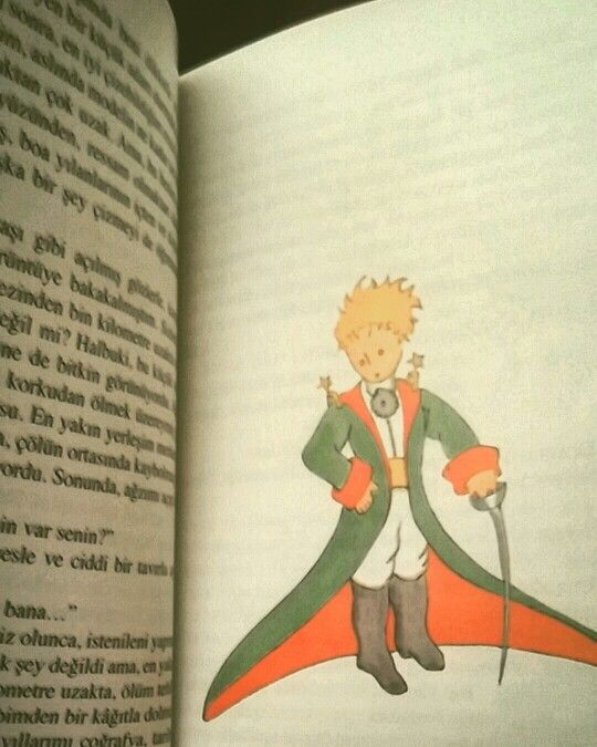 Küçük Prens - The Little Prince -Le Petit Prince