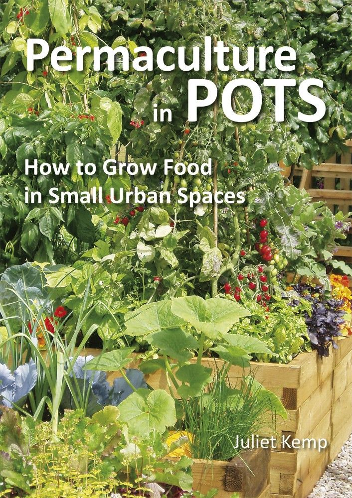 34 best permaculture organic gardener starter kit images on permaculture in pots how to grow food in small urban spaces juliet kemp permanent publications green shopping ebook fandeluxe Images