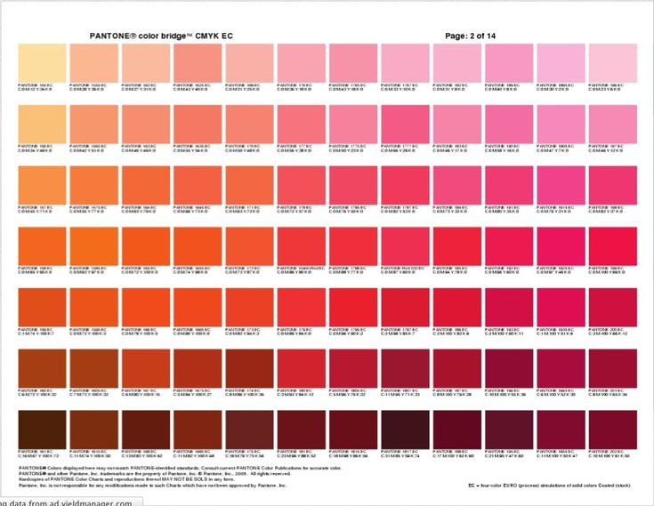pantone color bridge 5 - orange & pink