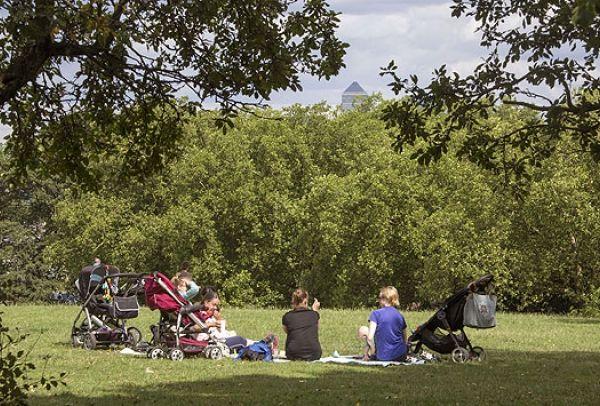 Manor Park - Postcode: E12, Quarterly change: 3.91%, Monthly average room rent: £555