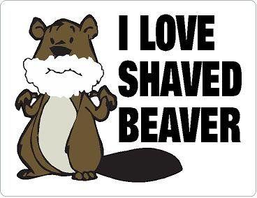 "I Love Shaved Beaver Sticker - 4""x5"""