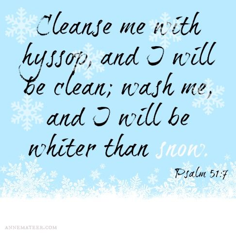 Psalm 51: (KJV) ~~ Purge me with hyssop, and I shall be clean: wash me, and I shall be whiter than snow.