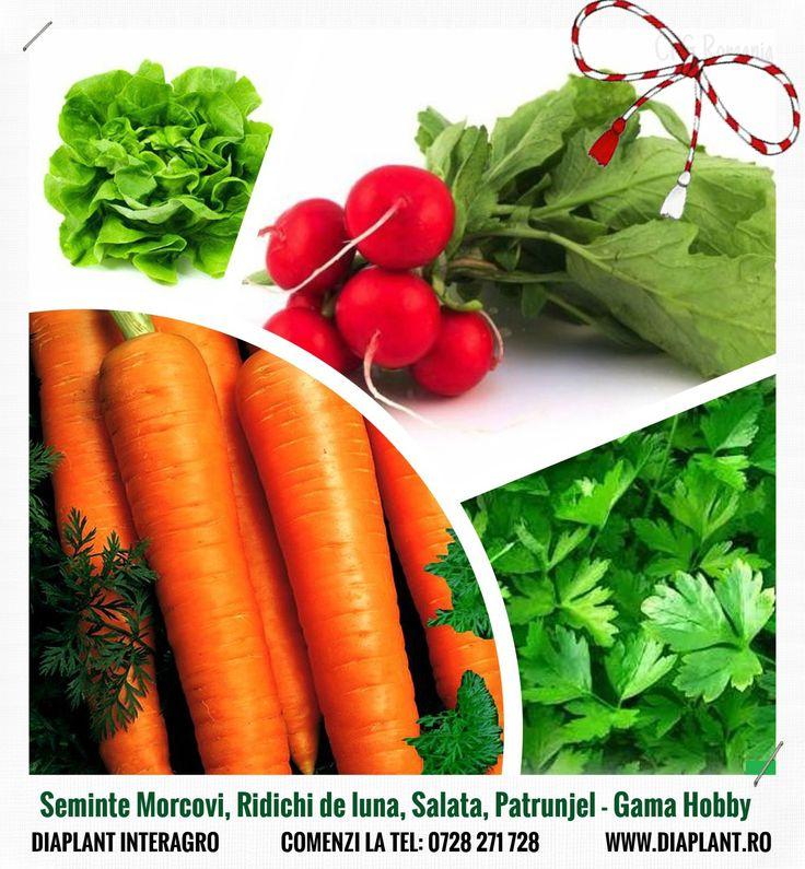 Seminte Morcovi, Ridichi de luna, Salata, Patrunjel - Gama Hobby Comenzi la tel: 0728 271 728 DIAPLANT - Mereu la dispozitia dvs.! Seminte - Pesticide - Ingrasaminte #pesticide #ingrasaminte #seminte http://diaplant.ro/
