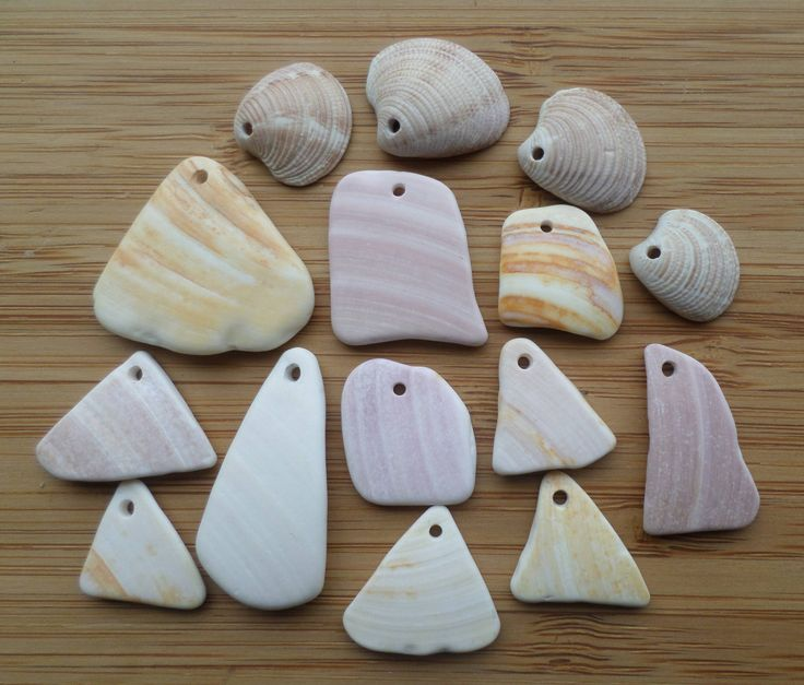 15 Surf Tumbled Pieces of Shell by OysterLagoon on Etsy