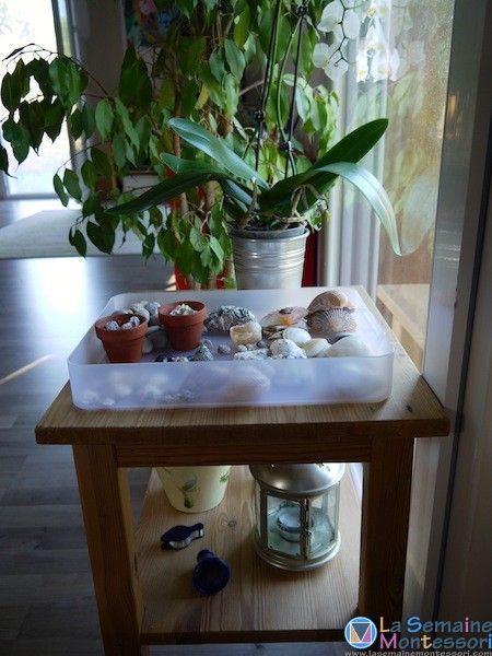 une petite table d'observation, remplie au rythme des trouvailles et des saisons